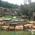 Cisjordanie, eau