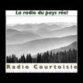 Laurent Wetzel pour son livre : «Ils ont tué l'histoire-géo» sur Radio Courtoisie (12-09-2012)