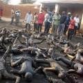 En-2012-les-pogroms-de-chrétiens-se-sont-multipliés-en-Afrique