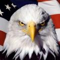 L'impérialisme US met le feu au monde pour ses petits intérêts géopolitiques, et l'Europe joue les caniches...