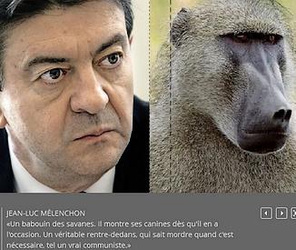 Mélenchon le babouin