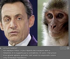 Sarkozy le macaque