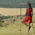 Les Masaïs, sacrifiés par leur gouvernement pour satisfaire l'envie de safari des milliardaires de Dubaï..