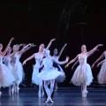 Un peu de beauté dans un monde de brutes : Marianela Nunez dans le pas de deux du Cygne Blanc, IIème acte du Lac des cygnes (Royal Opera House, 2009)