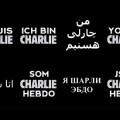 La France, la mondialisation, l'oligarchie, la presse, la population lobotomisée et ébétéee voient des Charlie partout..
