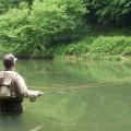 La pêche à la ligne... pour éviter de vomir