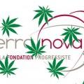 Terra Nova et le cannabis, ou la légalisation de la drogue pour noyer dans la fumette le dramatique bilan de la Hollandie en matière de drogue